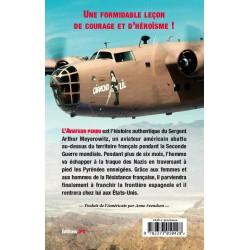 L'aviateur perdu